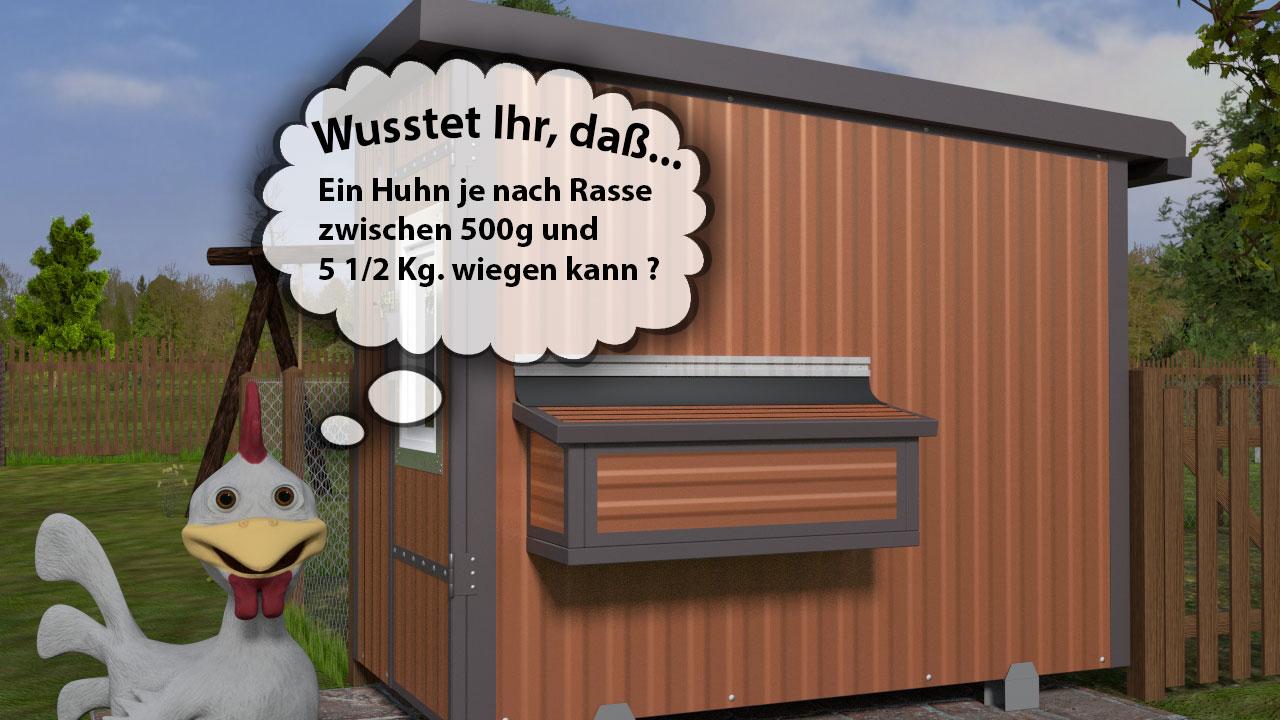 Wie viel wiegen Hühner